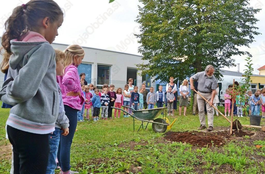 Župan zasadil drevo
