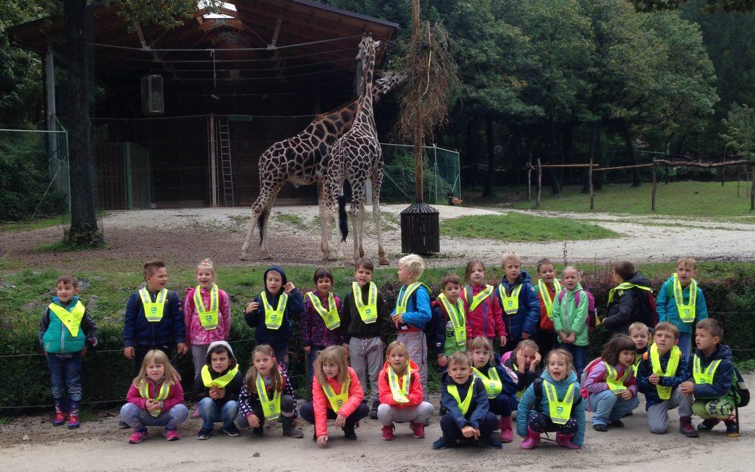 ND – Živalski vrt