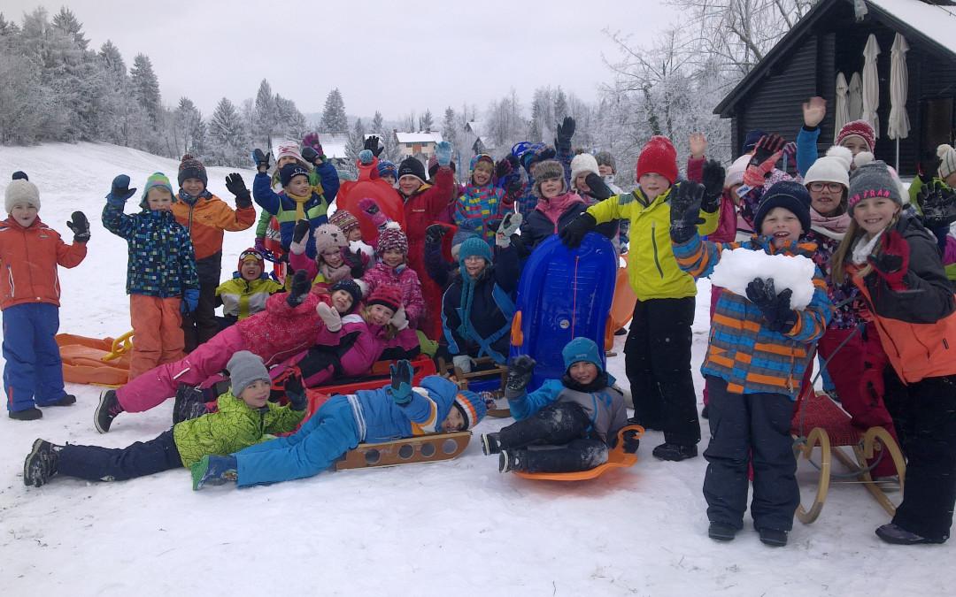 Zimski športni dan – sankanje