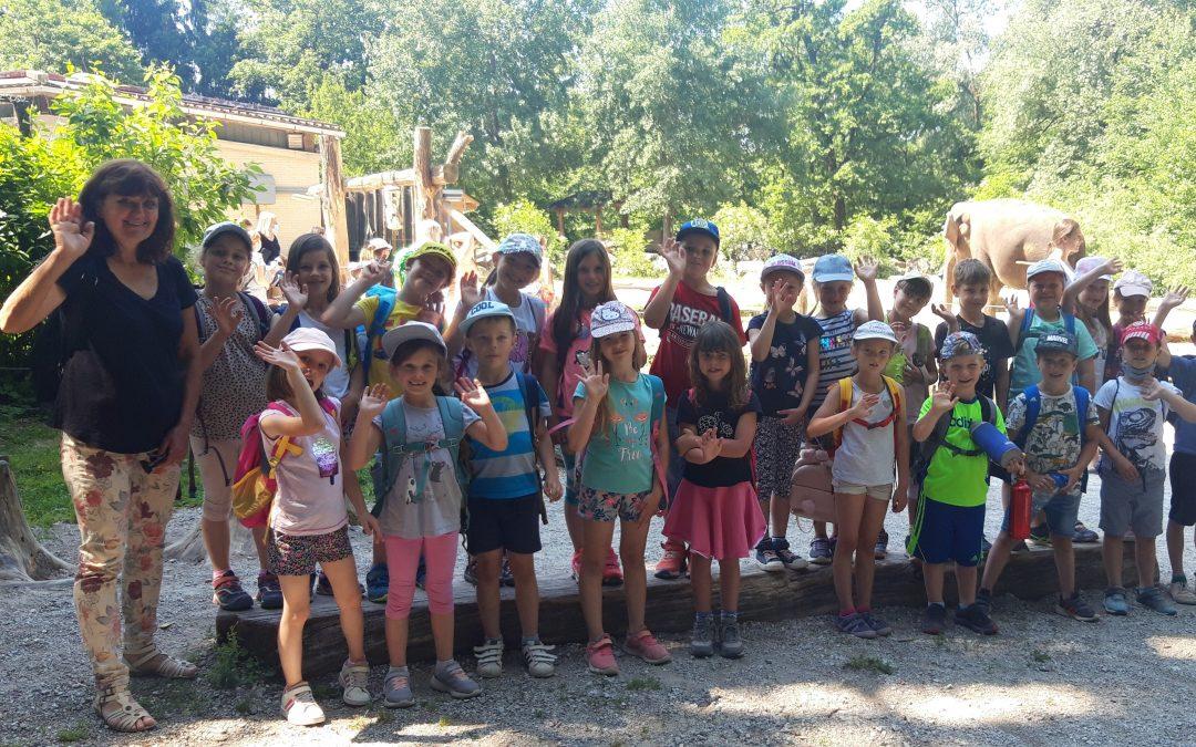 Športni dan in obisk Živalskega vrta